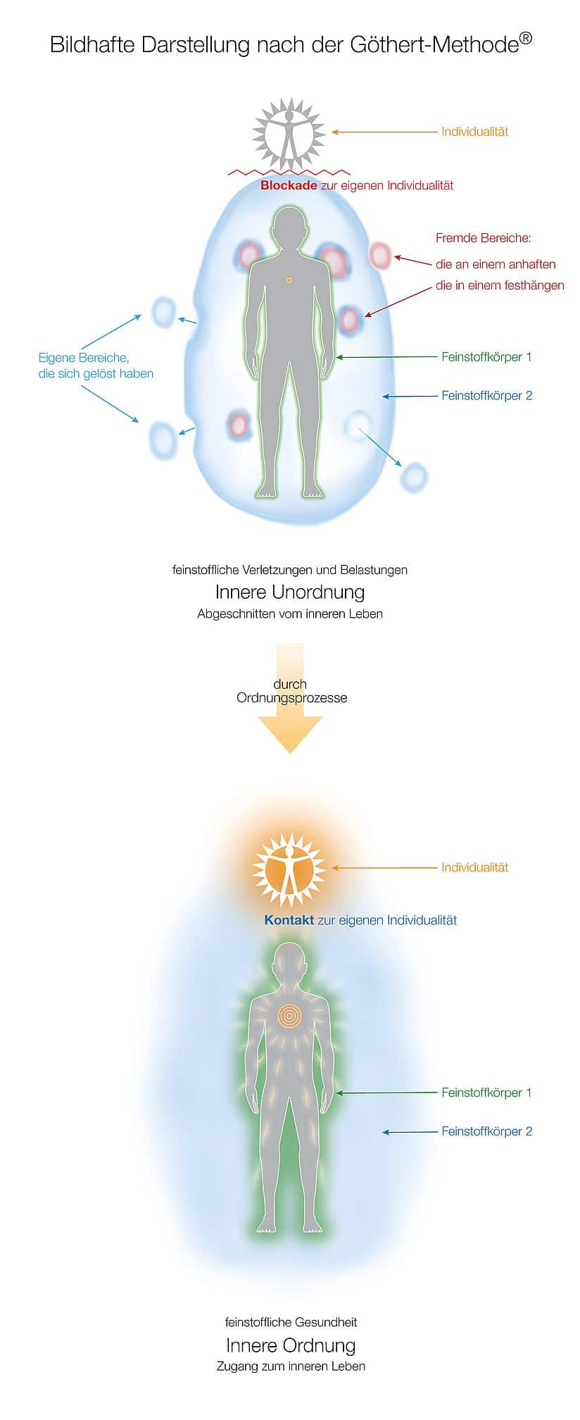 2. Was passiert in den Feinstoffkörpern, wenn sich die innere Unordnung durch Ordnungsprozesse zur inneren Ordnung verändert?